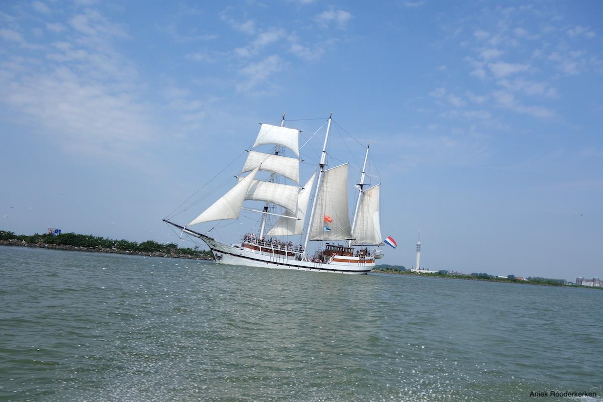 Marker Wadden excursie zeilboot