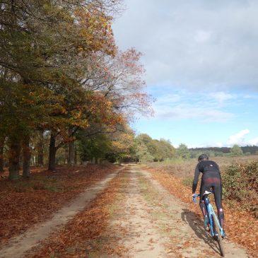 De mooiste mountainbikeroute op de Sallandse Heuvelrug