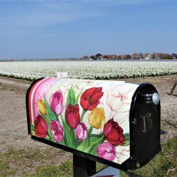 Voorjaarswandelen op het Noord-Hollandpad