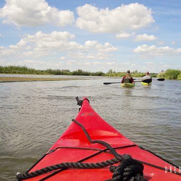 Actief in eigen land: verken De Biesbosch