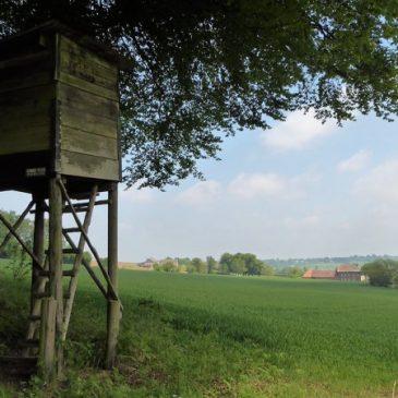 Topwandeling vanaf Landal Hoog Vaals: Trage Tocht Holset